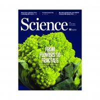 9 JULY 2021  Science