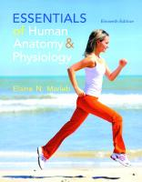 Essentials of human anatomy & physiology [Eleventhed.]  9780133481662, 0133481662, 9780321919007, 0321919009, 9781292075259, 1292075252