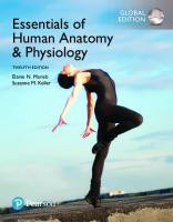 Essentials of Human Anatomy & Physiology, Global Edition [12th edition]