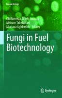 Fungi in Fuel Biotechnology [1st ed.]
